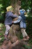 Los hermanos de gemelos abrazan un árbol Foto de archivo libre de regalías