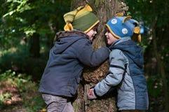 Los hermanos gemelos abrazan un árbol Imagen de archivo libre de regalías