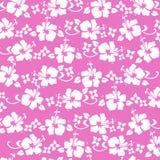 Los hibiscos pattren color de rosa caliente Imagen de archivo libre de regalías