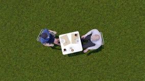 Los hombres de negocios discuten en el almuerzo en la opinión superior del césped stock de ilustración
