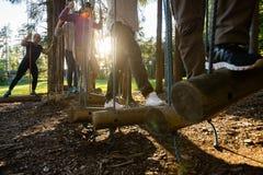 Los hombres de negocios que cruzan el balanceo abren una sesión el bosque Fotografía de archivo