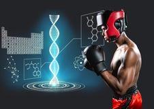 los hombres del boxeo de retroceso con el azul encienden la cadena de la DNA detrás Fondo oscuro Foto de archivo