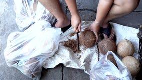 Los hombres están pelando la cáscara del coco