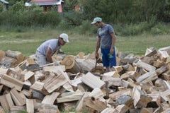 Los hombres jovenes partieron la madera en Rumania Fotografía de archivo libre de regalías