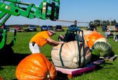 Los hombres mueven la calabaza gigante Fotos de archivo