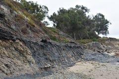 Los hoyos de alquitrán de Carpinteria California, 7 Foto de archivo