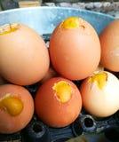 Los huevos asados a la parrilla, compran por favor la comida fácil imagen de archivo