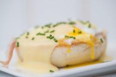 Los huevos Benedicto tostaron los huevos escalfados y holla del jamón de los molletes ingleses Imagen de archivo libre de regalías