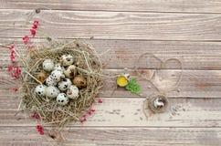 Los huevos de codornices en una paja jerarquizan en el viejo fondo de madera de la tabla Ilustración retra de la vendimia style Imágenes de archivo libres de regalías
