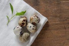 Los huevos de codornices en una tabla de madera vieja con la primavera verde se van Foto de archivo libre de regalías