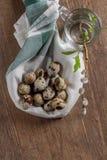 Los huevos de codornices en una tabla y un sauce de madera viejos ramifican Fotos de archivo libres de regalías