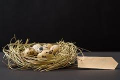 Los huevos de codornices de Pascua en la jerarquía y el papel hecho a mano en blanco cubren Tarjeta gretting en blanco por los dí Fotos de archivo libres de regalías