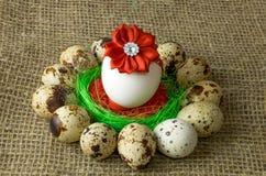 Los huevos de codornices y el huevo del pollo con el arco rojo están en un círculo alrededor del cuenco azul plástico de sal roja Fotos de archivo libres de regalías