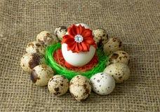 Los huevos de codornices y el huevo del pollo con el arco rojo están en un círculo alrededor del cuenco azul plástico de sal roja Fotografía de archivo libre de regalías