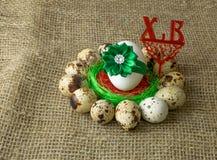 Los huevos de codornices y el huevo del pollo con el arco verde están en un círculo alrededor de la sal roja en una tabla de made Imagen de archivo libre de regalías