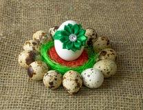 Los huevos de codornices y el huevo del pollo con el arco verde están en un círculo alrededor del cuenco azul plástico de sal roj Fotos de archivo