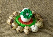 Los huevos de codornices y el huevo del pollo con el arco verde están en un círculo alrededor del cuenco azul plástico de sal roj Imagenes de archivo