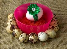 Los huevos de codornices y el huevo del pollo con el arco verde están en un círculo alrededor del cuenco rosado plástico de sal r Imagen de archivo