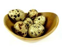 Los huevos de codorniz Fotos de archivo libres de regalías