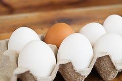 Los huevos de gallina en una caja abierta fotografía de archivo libre de regalías