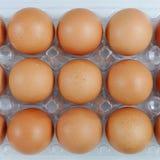 Los huevos de gallina frescos Imágenes de archivo libres de regalías