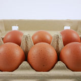 Los huevos de gallina frescos Fotografía de archivo libre de regalías