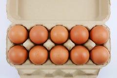 Los huevos de gallina frescos fotografía de archivo