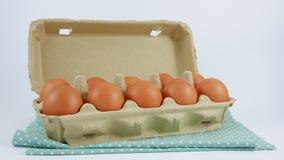 Los huevos de gallina frescos en la caja de papel del panel Fotos de archivo