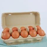 Los huevos de gallina frescos en la caja de papel del panel Imagen de archivo