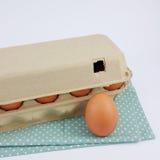Los huevos de gallina frescos en la caja de papel del panel fotografía de archivo libre de regalías