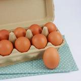 Los huevos de gallina frescos en la caja de papel del panel Imagenes de archivo