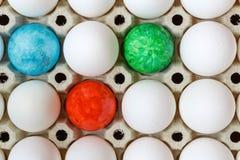 Los huevos de Pascua coloreados entre el pollo blanco eggs en primer de la bandeja de la cartulina Visión superior Imágenes de archivo libres de regalías