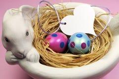 Los huevos de Pascua rosados y azules en el conejito blanco ruedan - horizontal. Fotografía de archivo