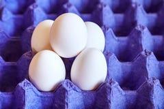 Los huevos en algo tienen gusto de una jerarquía de la paja Fotografía de archivo