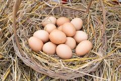 Los huevos en una cesta se colocan en la paja Fotografía de archivo libre de regalías
