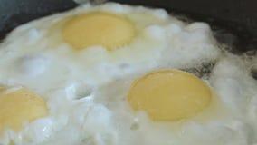 Los huevos fritos cocinados en un cierre de la cacerola encima de a cámara lenta almacen de video