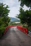 Los humedales del este del valle del té de OCT Shenzhen Meisha se quedan calvo el puente Fotografía de archivo libre de regalías
