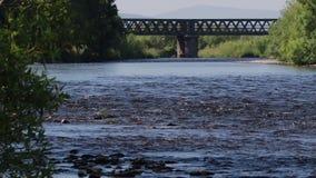 Los humores del spey aúllan, bahía del río en junio temprano por la mañana, Escocia almacen de metraje de vídeo