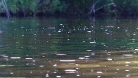 Los humores del spey aúllan, bahía del río en junio temprano por la mañana, Escocia almacen de video