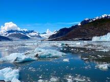 Los icebergs y las masas de hielo flotante en el príncipe Guillermo suenan Fotografía de archivo libre de regalías