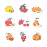 Los iconos de la fruta enrarecen la línea sistema Foto de archivo libre de regalías