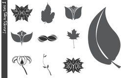 Los iconos de las hojas fijaron 1 ilustración del vector