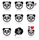 Los iconos del oso de panda fijaron - feliz, triste, enojado aislados en blanco stock de ilustración