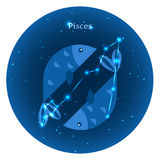 Los iconos estilizados del zodiaco firman adentro el cielo nocturno con la constelación brillante de las estrellas en frente Fotografía de archivo libre de regalías