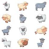 Los iicons lindos de la granja del cordero de las ovejas fijaron, estilo de la historieta ilustración del vector