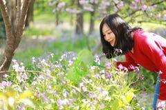 Los insectos chinos asiáticos de la captura de la muchacha de la belleza de la mujer en un campo de flor en un otoño del verano d Fotografía de archivo
