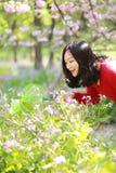 Los insectos chinos asiáticos de la captura de la muchacha de la belleza de la mujer en un campo de flor en un otoño del verano d Foto de archivo libre de regalías