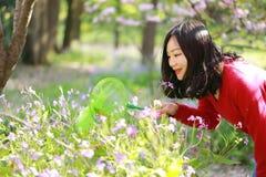 Los insectos chinos asiáticos de la captura de la muchacha de la belleza de la mujer en un campo de flor en un otoño del verano d Foto de archivo