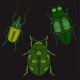 Los insectos fijaron el bordado de imitación Imagen de archivo