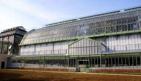 Los invernaderos abren de nuevo en DES Plantes, París de Jardin Imágenes de archivo libres de regalías